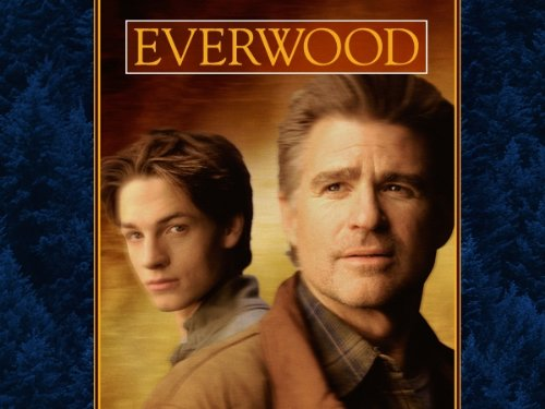 Everwood: The Complete First Season