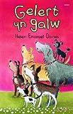 Gelert Yn Galw (Cyfres Swigod) (Welsh Edition)