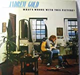 Andrew Gold What's Wrong With This Picture?
