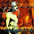 Neo Milenio