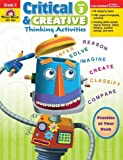 Critical and Creative Thinking Activities, Grade 3 (1596733993) by Rachel Lynette