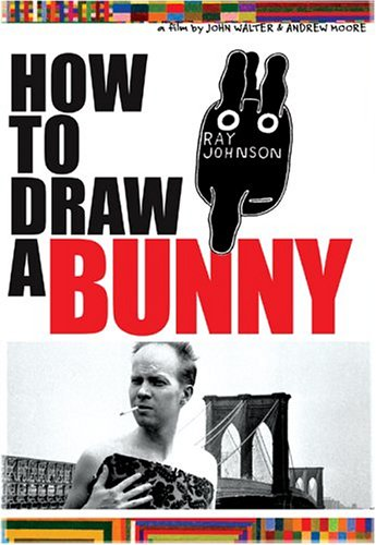 Cover art for  How to Draw a Bunny
