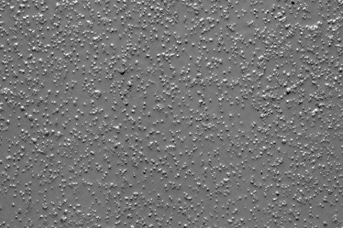 dmd-direct-11221301-2-partie-plus-fine-grain-de-sol-epoxy-manteau-gris