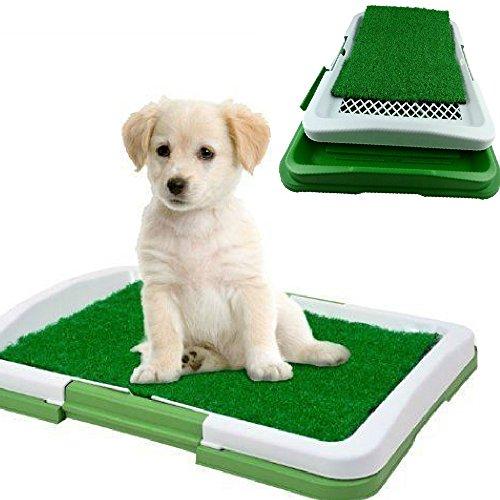 dobor-lettiera-mini-wc-per-cani-e-gatti-cuccioli-di-piccola-taglia-con-erba-sintetica-assorbente-ott
