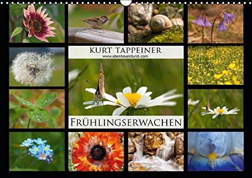 fruhlingserwachen-wandkalender-2015-din-a3-quer-fruhling-in-sudtirol-monatskalender-14-seiten