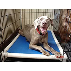 """Elevated Chew-Proof Crate Dog Bed Size: Small (20"""" x 30""""), Fabric: Vinyl Weave - Sierra"""