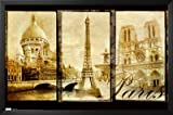 Professionally Framed Paris (Triptych, Sacre Couer, Eiffel Tower, Notre Dame) Art Poster Print - 22x34 with Solid Black Wood Frame