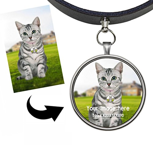 Sliding Cat Collars Name Tags