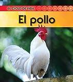 El pollo (El ciclo de vida) (Spanish Edition)