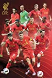 Liverpool Football Team Poster showing 2012/2013 Players with Additional Item multicoloured