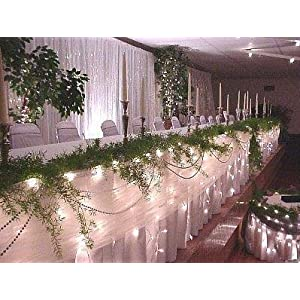 wedding reception decoration ideas, Christmas lights