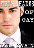 Fifty Shades of Gay, Erotic Thriller