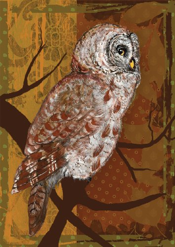 home-garden-toland-109415-night-owl-house-flagge