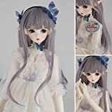 1/3 BJD with 9-10 Inch Doll Wig High Temperature Synthetic Fiber Long Straight Granny Grey Hair Wig BJD Doll Wigs for 1/3 BJD SD Doll(T3904) (Color: T3904)