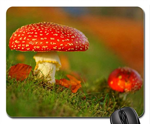 Red mushrooms Mouse Pad, Mousepad (Forests Mouse Pad)