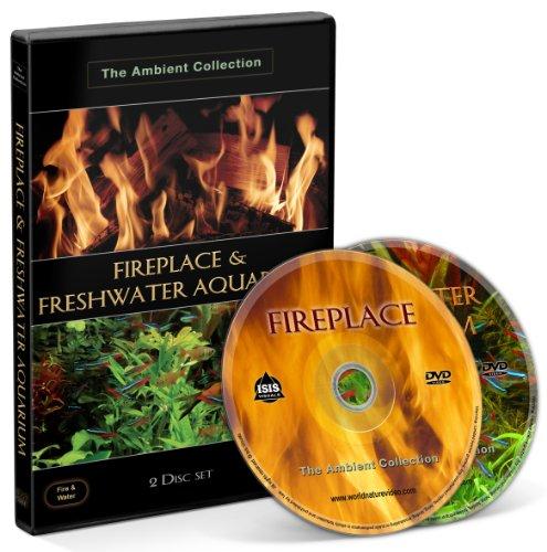 fireplace-freshwater-aquarium