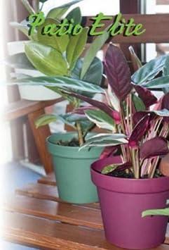 o 10x pot de de fleur h 126 mm diametre 150 mm plastique plastique bordeaux jardin. Black Bedroom Furniture Sets. Home Design Ideas