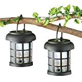 Solar Led Garden Lanterns - Set Of 2