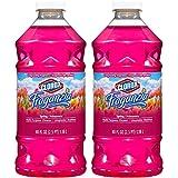 Clorox® Fraganzia® Multi-Purpose Cleaner, Spring Scent, Two 40 Fl. Oz Bottles (80 fl oz total)