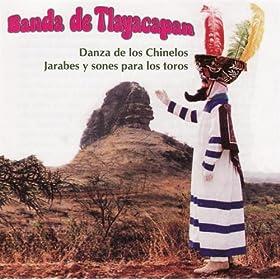 Amazon.com: Danza De Los Chinelos - bloque 2: Banda De Tlayacapan: MP3