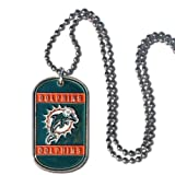 NFL Miami Dolphins Dog Tag Necklace at Amazon.com