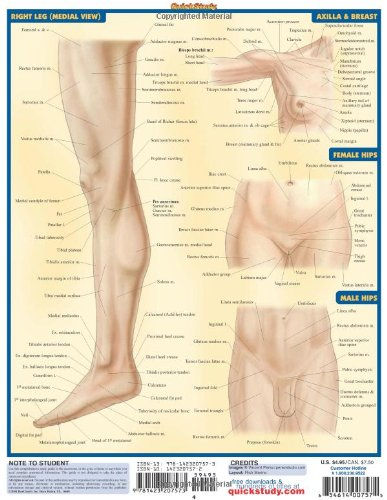 Surface Anatomy (Quickstudy: Academic)