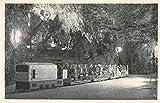Postojna Slovenia Postojna Cave Train Antique Postcard J7139