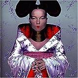 Songtexte von Björk - Homogenic