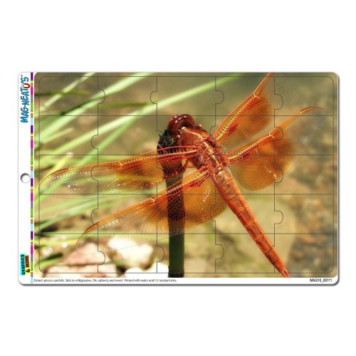 Graphics And More Red Orange Dragonfly Mag-Neato'S Novelty Gift Locker Refrigerator Vinyl Puzzle Magnet Set front-641702