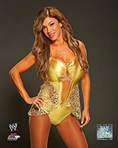 Amazon.com: Rosa Mendes - WWE 11x14 Photo 2014 posed wearing gold