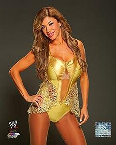Amazon.com: Rosa Mendes - WWE 11x14 Photo 2014 posed