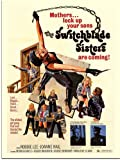 Switchblade Sisters, Exploitation Movie Poster (30x40cm Art Print)