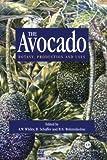 Avocado: Botany, Production and Uses