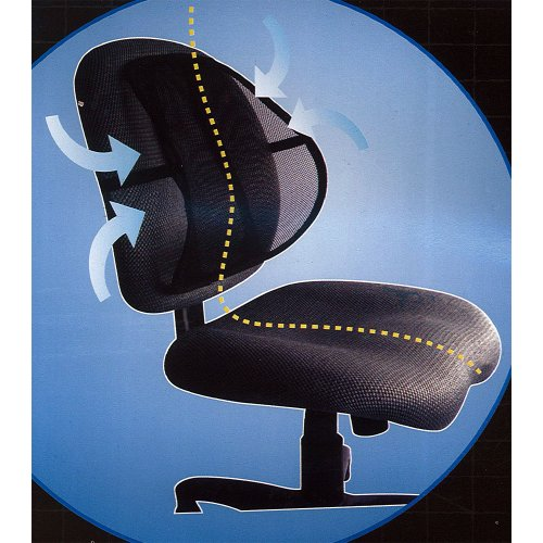 Black Mesh Lumbar Support Car Seat Office Desk Chair