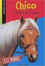 Chico, le poney de la plage