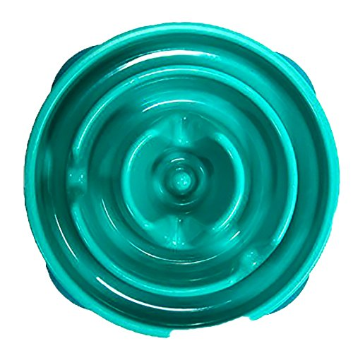 Outward Hound Fun Feeder Dog Bowl Slow Feeder Stop Bloat for Dogs, Small, Teal (Cat Slow Feeding compare prices)