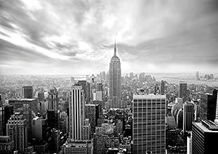 J.P. London MDXL5002PS Peel and Stick New York City Skyline Empire Removable Full Wall Mural, 12-Feet X 8.5-Feet, Black/White