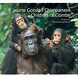 Chimpanzee Children of Gombe