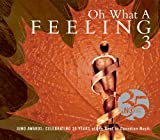 Various Artists Oh What a Feeling 3