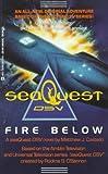 img - for Fire Below (seaQuest DSV) book / textbook / text book