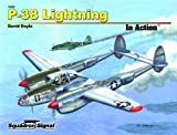 Image of P-38 Lightning in Action - Aircraft No. 222