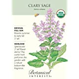 Organic Clary Sage Seeds