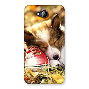 Ajay Enterprises Fill Cute Sleeping Puppy Back Case Cover for Canvas Play Q355