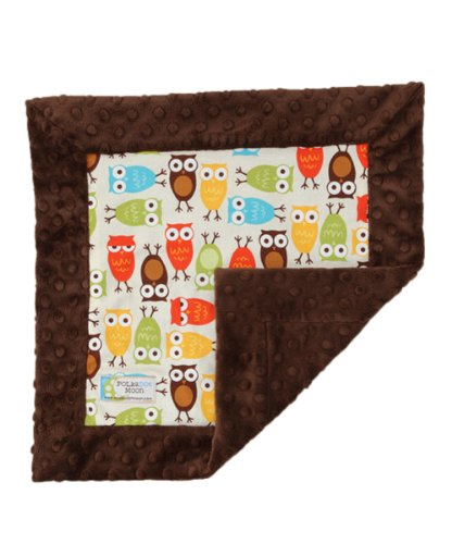 Baby Boy Lovey/Security Blanket - Owls on Brown Minky - 1