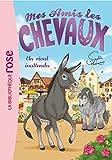 Mes amis les chevaux, tome 4 : Un rival inattendu