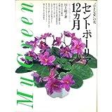 セントポーリア12カ月―必ず花が咲く育て方 (My Green)