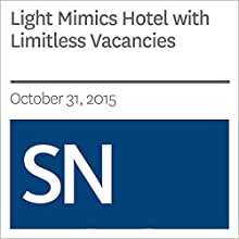 Light Mimics Hotel with Limitless Vacancies Other by Andrew Grant Narrated by Mark Moran
