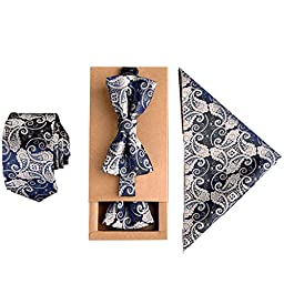 Mens Fashion Polyster Skinny Necktie and Bowtie Pocket Square 3pcs Set Valentine\'s Day Gifts 2