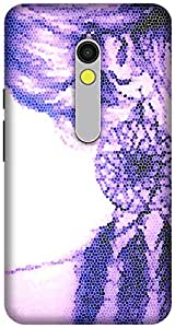 The Racoon Grip printed designer hard back mobile phone case cover for Motorola Moto X Play. (Asymmetric)
