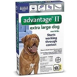 Bayer Advantage II Topical Flea Treatment Dogs - 55-Pound - 6 -Month